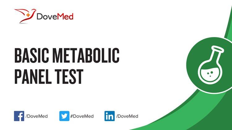 Basic Metabolic Panel Test