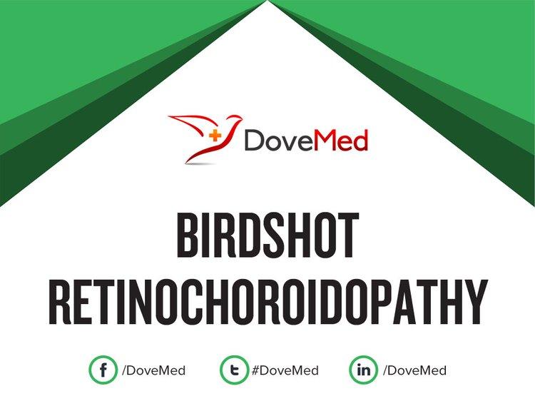 birdshot 2016 review