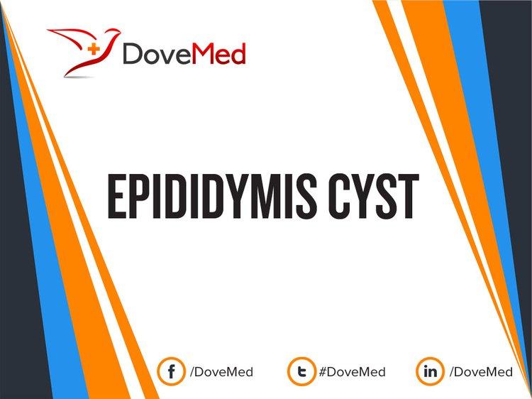 Epididymis Cyst