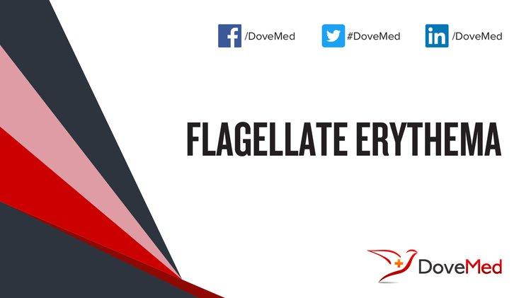 Flagellate Erythema