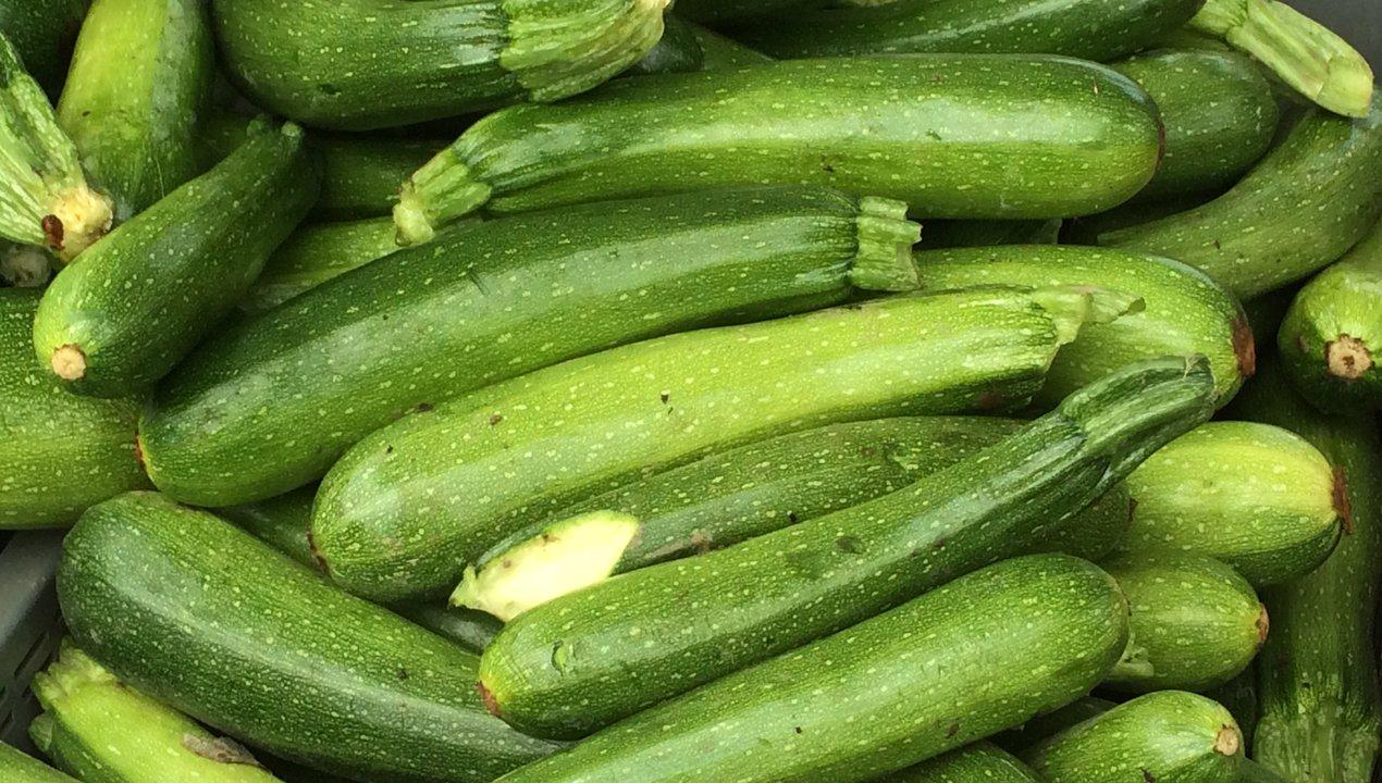 Zucchini.