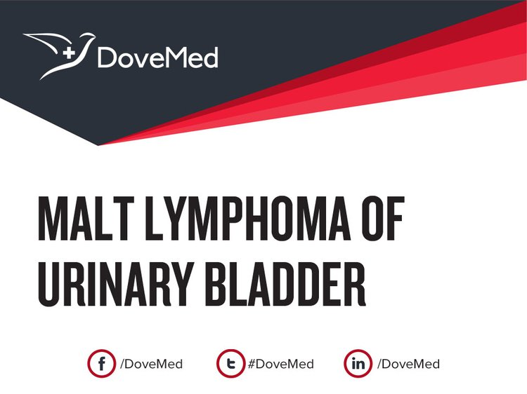Solitary Fibrous Tumor of Urinary Bladder