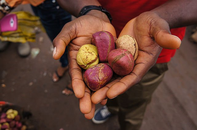 7 Health Benefits Of Kola Nuts