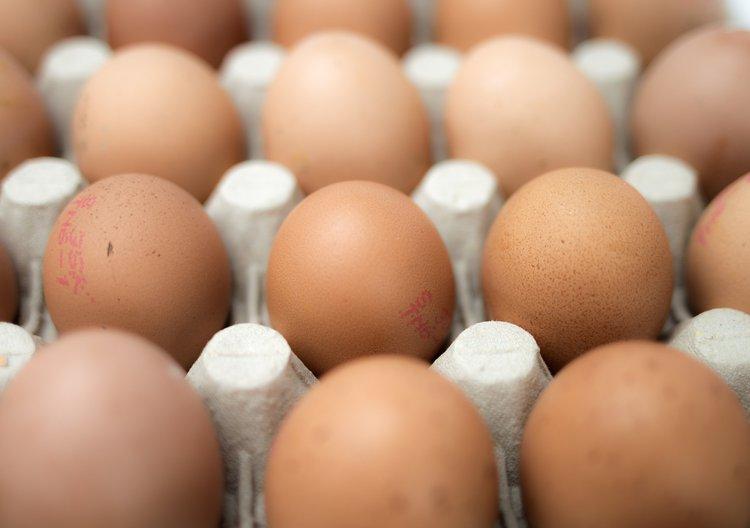 Are Organic Eggs Healthier Than Regular Eggs?