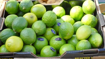lime, fruits, citrus fruits, sour, fruity, green, frisch.jpg