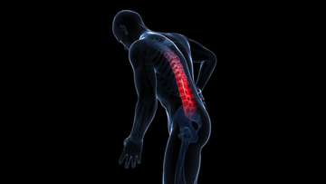 3d rendered illustration of an individual with back pain.