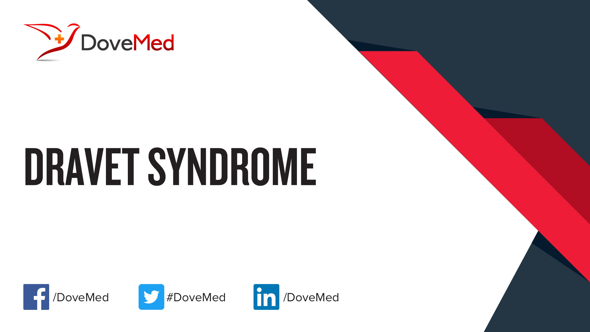 images Other Dravet Syndrome Causes