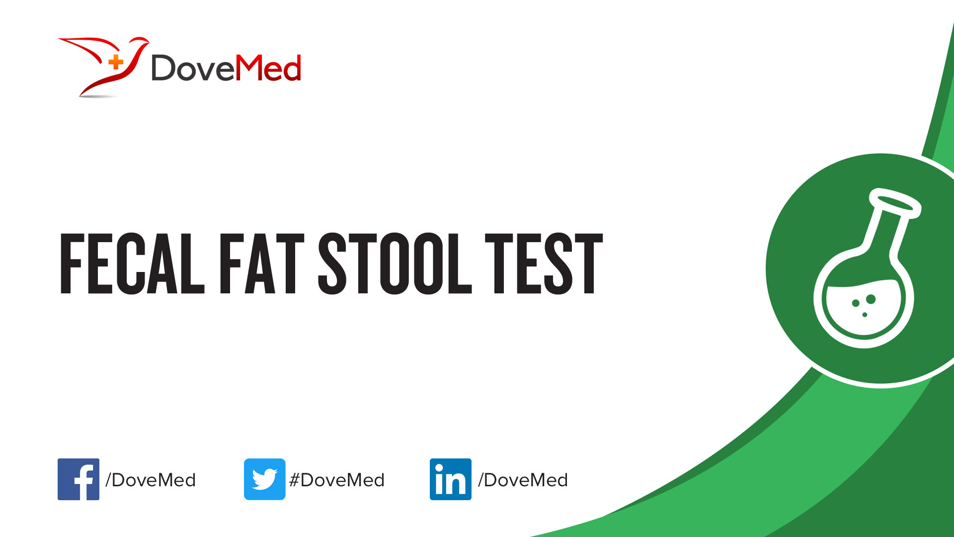 Fecal Fat Stool Test