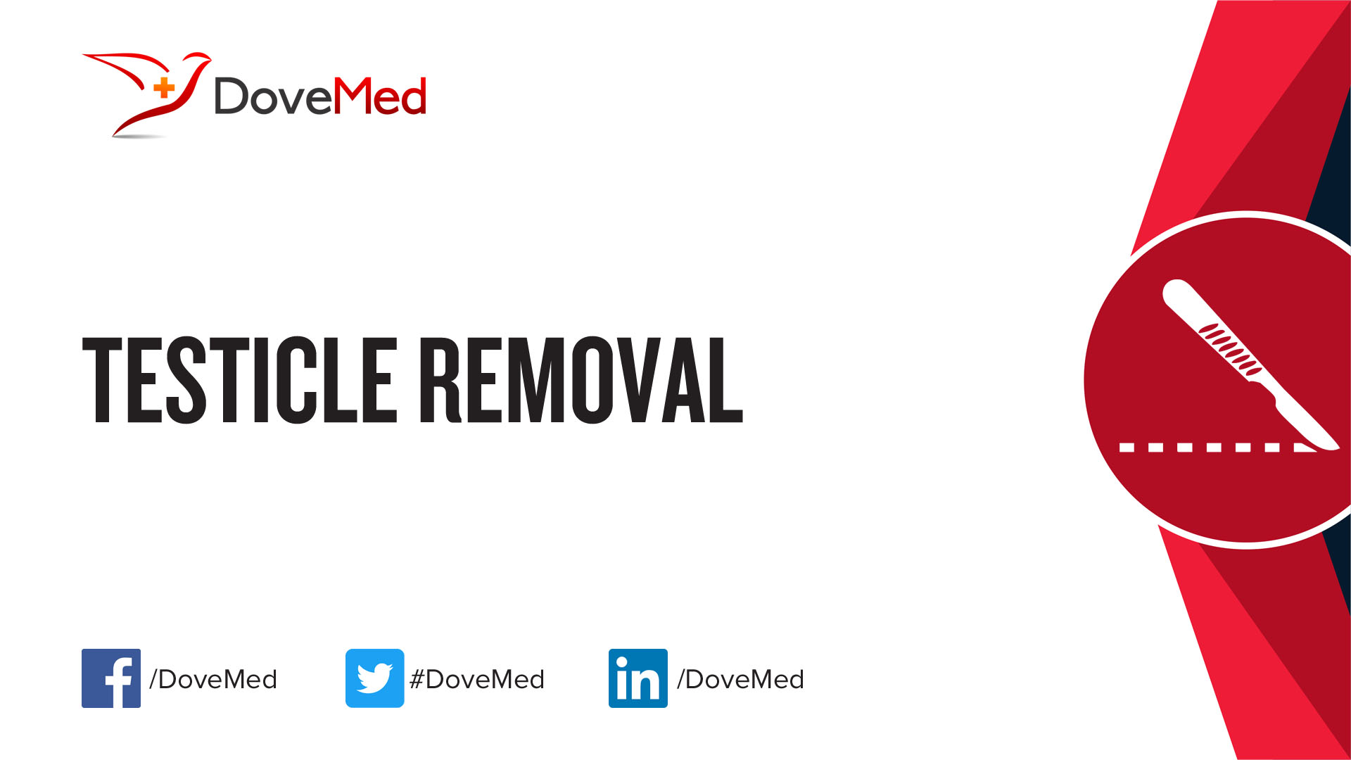 Testicle Removal