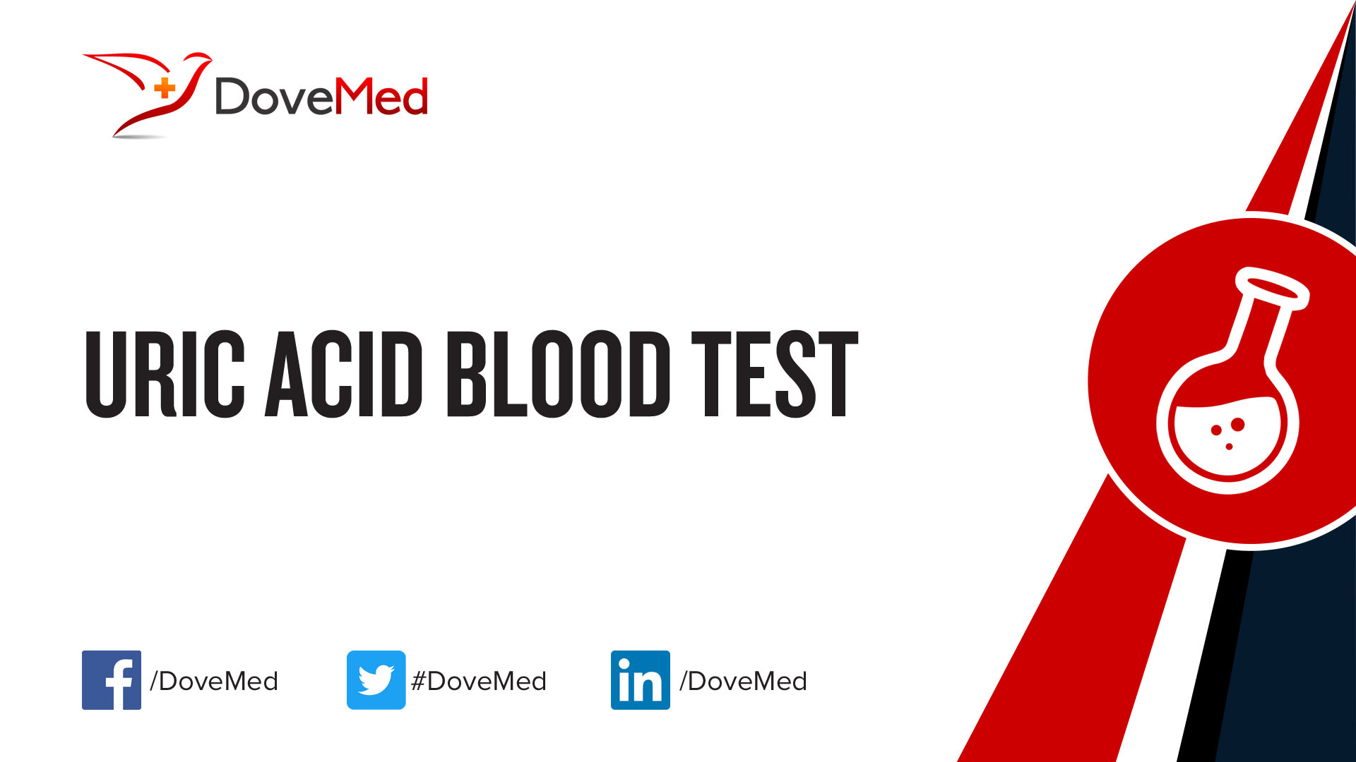 what does uric acid mean in a blood test